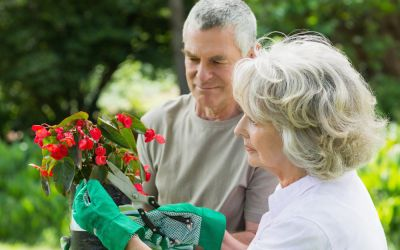 Benefits of Gardening for the Elderly